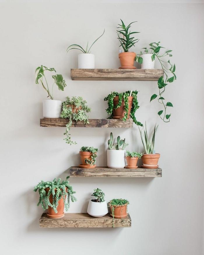 idée comment créer un mur végétal avec étagère diy planches bois mini pots fleur terre cuite succulentes