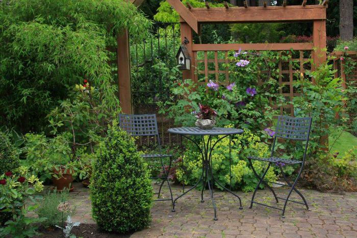 idee deco jardin avec végétation verte sauvage chaises et table métalliques arbustes vertes fleurs grimpantes