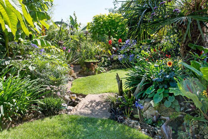 jardin paysager modele avec gazon vert et des plantes exotiques en bordure vegetation abondante
