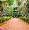 joli jardin avec fleurs roses fontaine de jardin