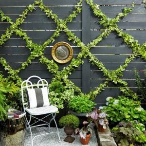 Comment aménager un petit jardin de 20 m2 - des règles d'or pour petites surfaces