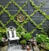 mur de cloture maison planches de bois peinture noire et guirlande verte plantes en pots et parterre de plantes sol gravier chaise metallique table service