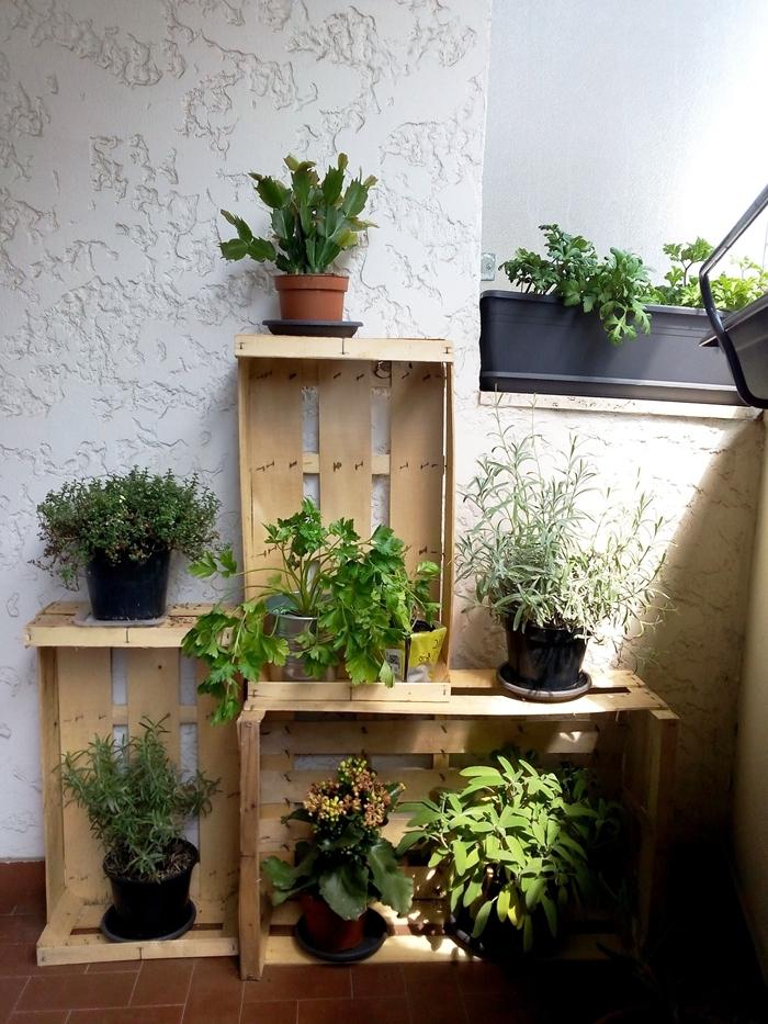 mur vegetal exterieur terrasse diy construction en cagette bois plantes vertes succulentes balcon déco