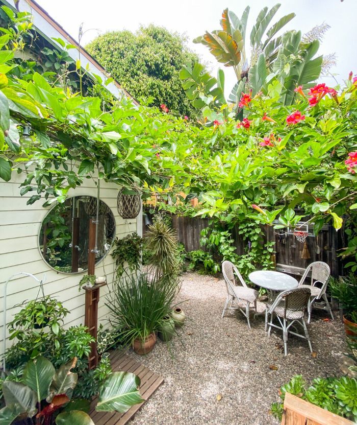 palissade de bois végétalisée avec des plantes tropicales autour coin repas chaises et table ronde plantes en pot gravier de jardin