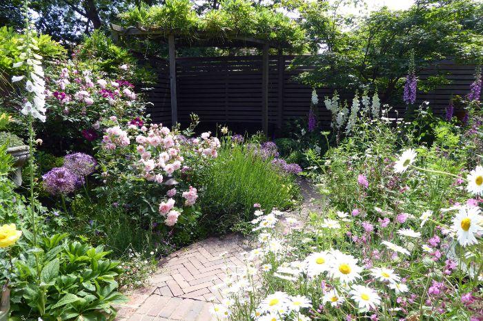 parterre massif de fleurs à l anglaise avec plusieurs fleurs sauvages et chemin de dalles et mur de cloture de bois