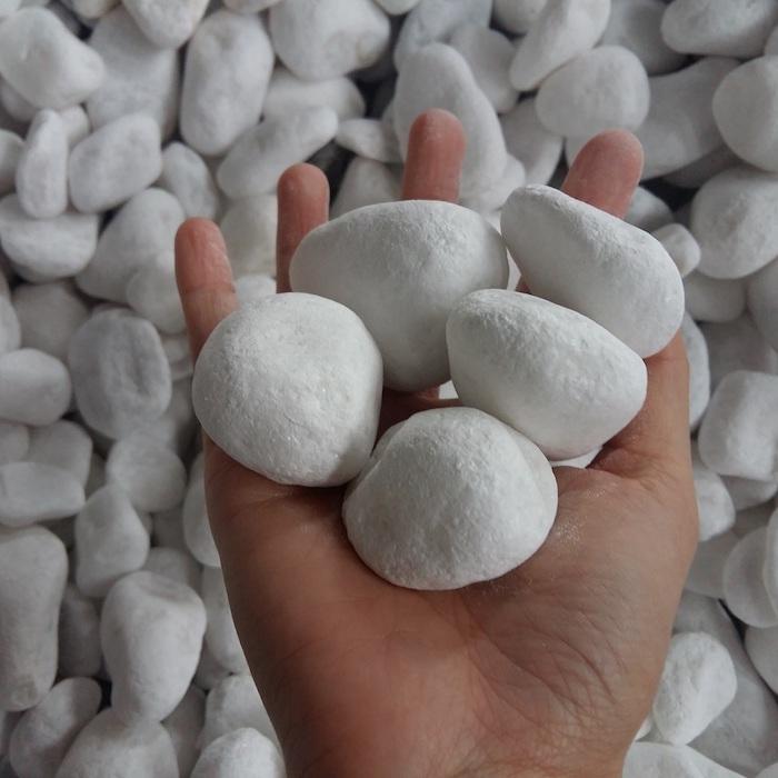 un main qui tient des galets d une couleur blanc neige avec des autres au dessous