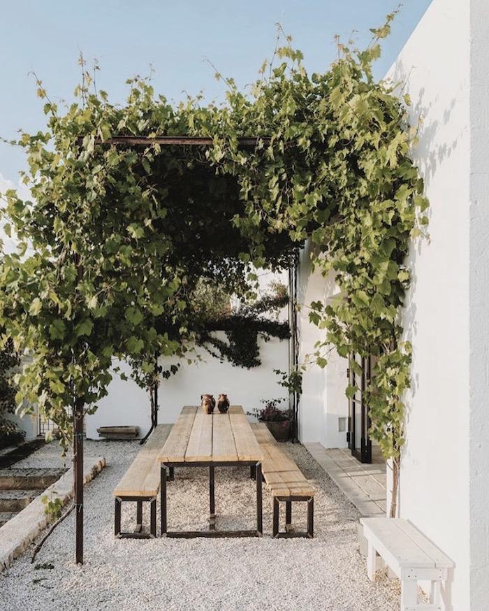 astuce deco jardin recup une véranda ave pergola naturelle de verdure et bancs en bois