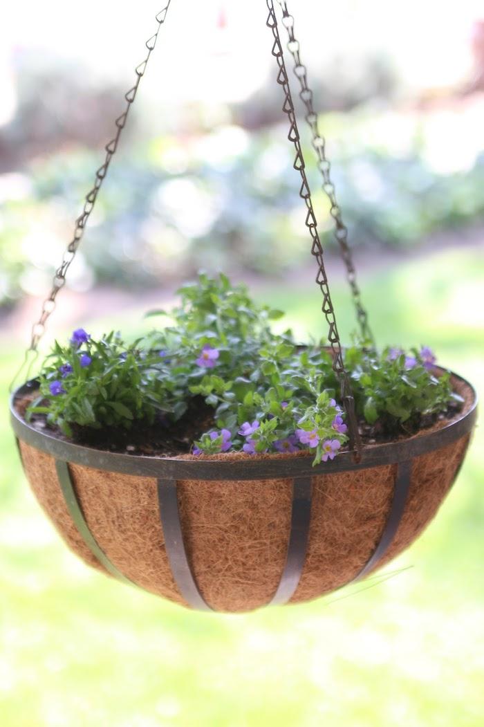 astuces de jardin des fleurs violets plantes dans un pot suspendu