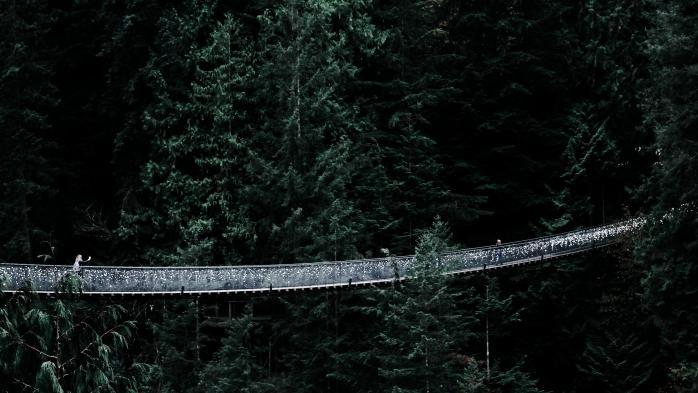 aventures promenades en vert pont suspendu capilano région colombie britannique fleuve