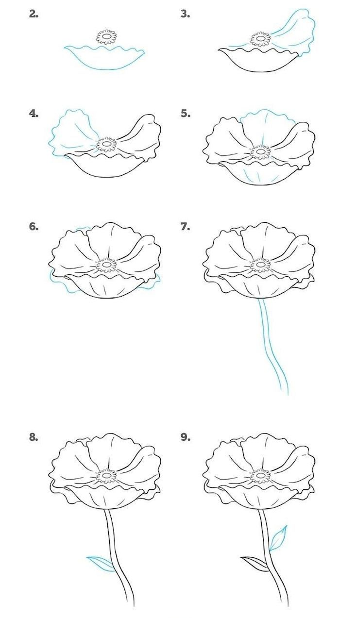 dessin a reproduire par étape d un design simple aux grandes feuilles sur fond blanc