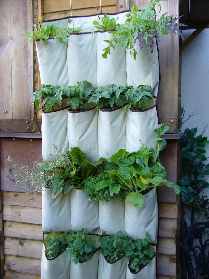 diy jardin des plantes dans une etagère en tissu avec des poches