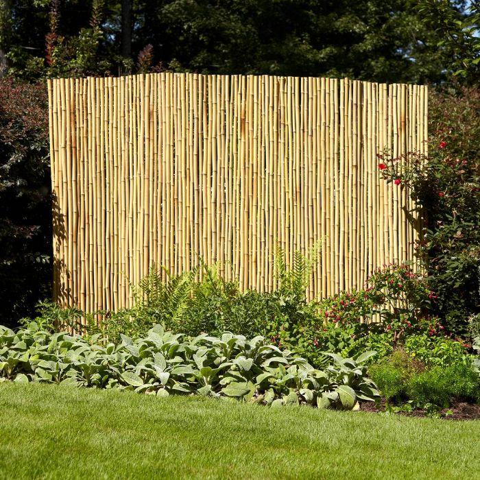 exemple de palissade bambou ecran exterieur entouré de vegetation pelouse arbres verts