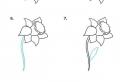 Dessin bouquet de fleurs pour débutant – idées d'art qui s'épanouissent