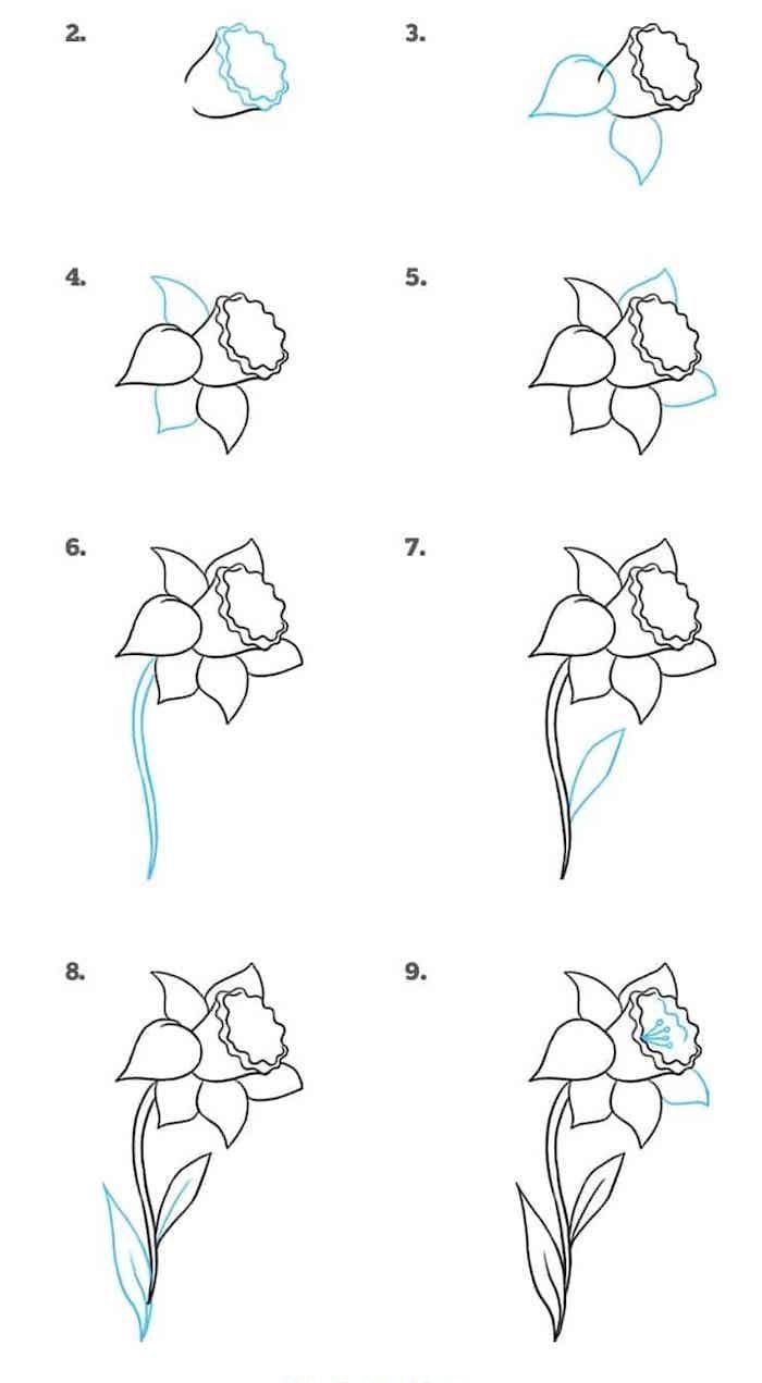 fleur de printemps comment dessiner une jonquille étape par étape pour réaliser un bouquet de fleurs de printemps