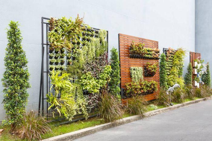 idées pour des laternatives de cloture panneaux de bois mur végétal vertical avec des pots de fleurs autres feuillages