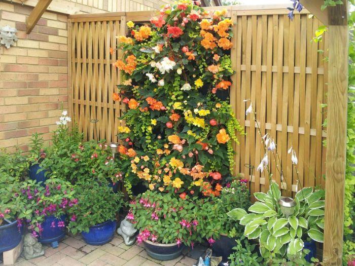 idee brise vue vegetale panneau fleuri avec des pots de fleurs autour palissade de bois blond