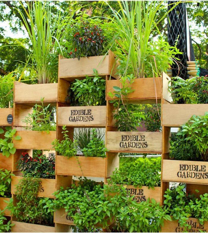 modele de jardinière brise vue avec des caissons de bois remplis de végétaux herbes superposés