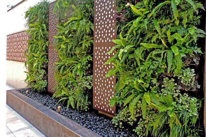 panneaux metalliques galets gris foncé plantes vertes mur vegetal vertical amenagement jardin creatif