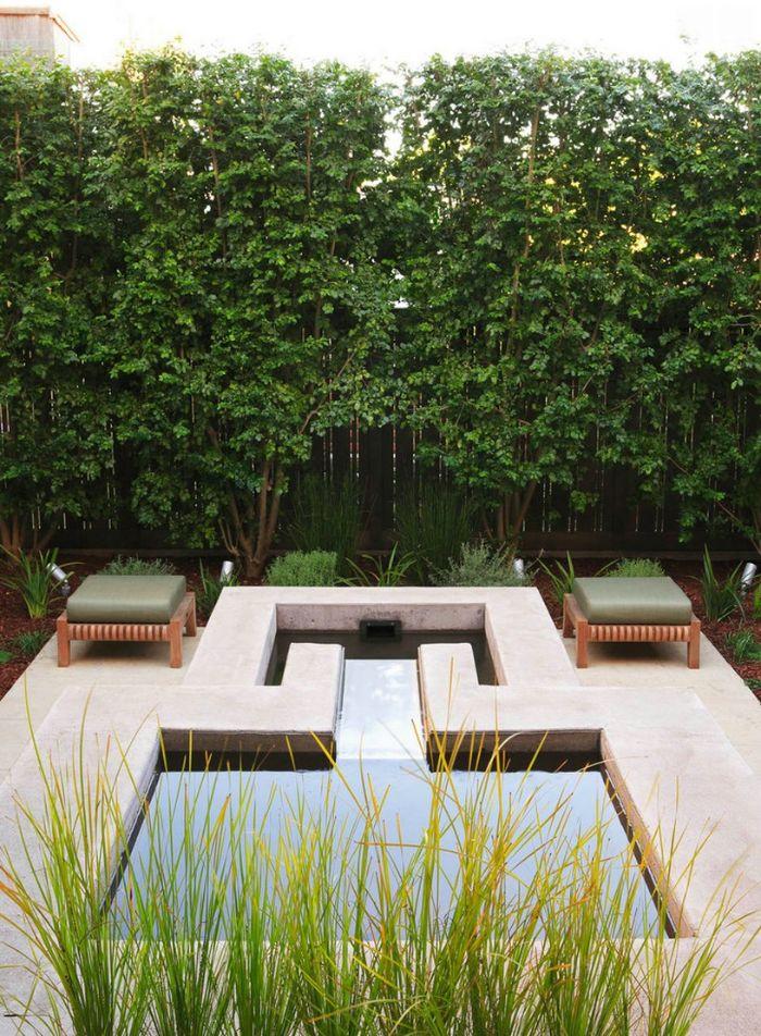 plante haute exterieur des arbres longeant une palissade de bois pour cacher l interieur d un jardin