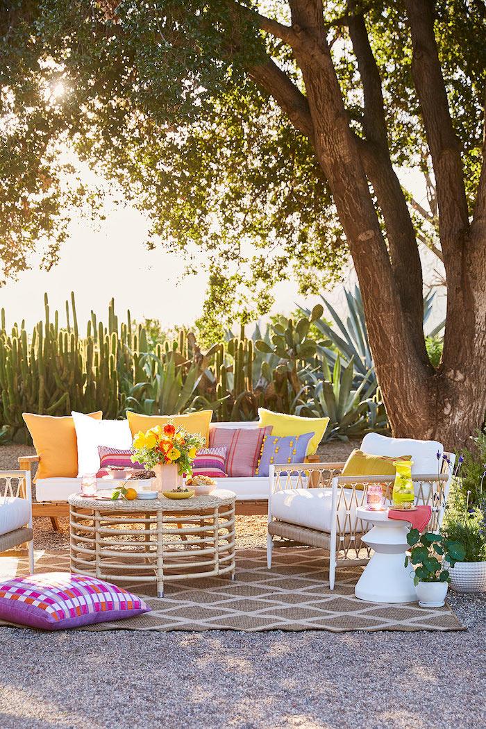 un jardin des cactus derrière un set des meubles en décoré des coussins mulicolorés