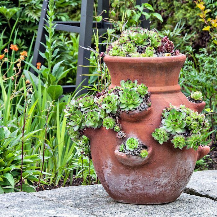 un pot a fleurs en argile avec es succulents plantés devant une abondance de verdure