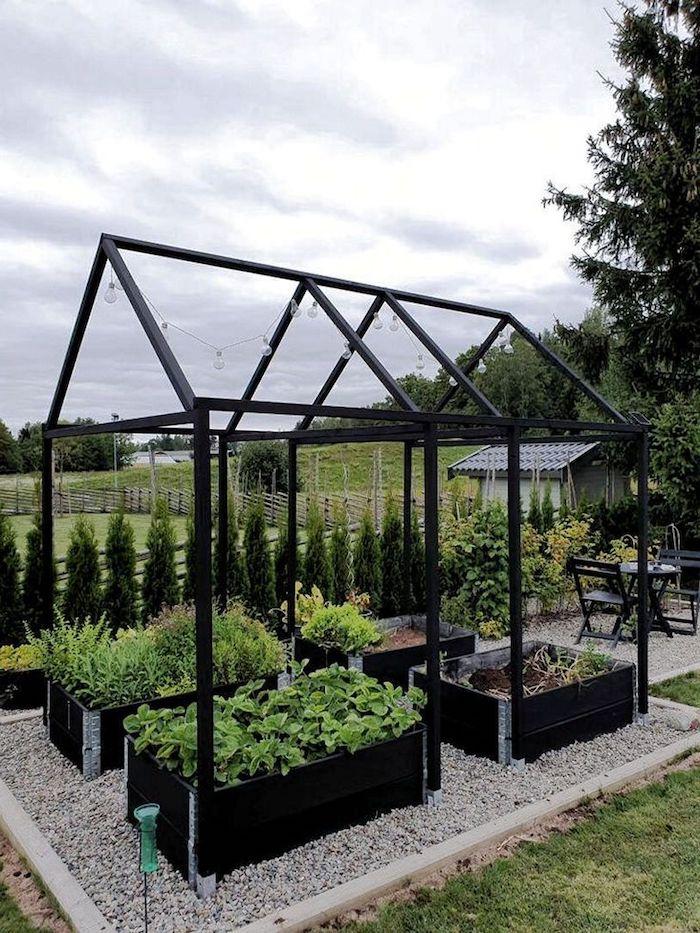 une idée de semer des graines sous une construction en metal dans le jardin