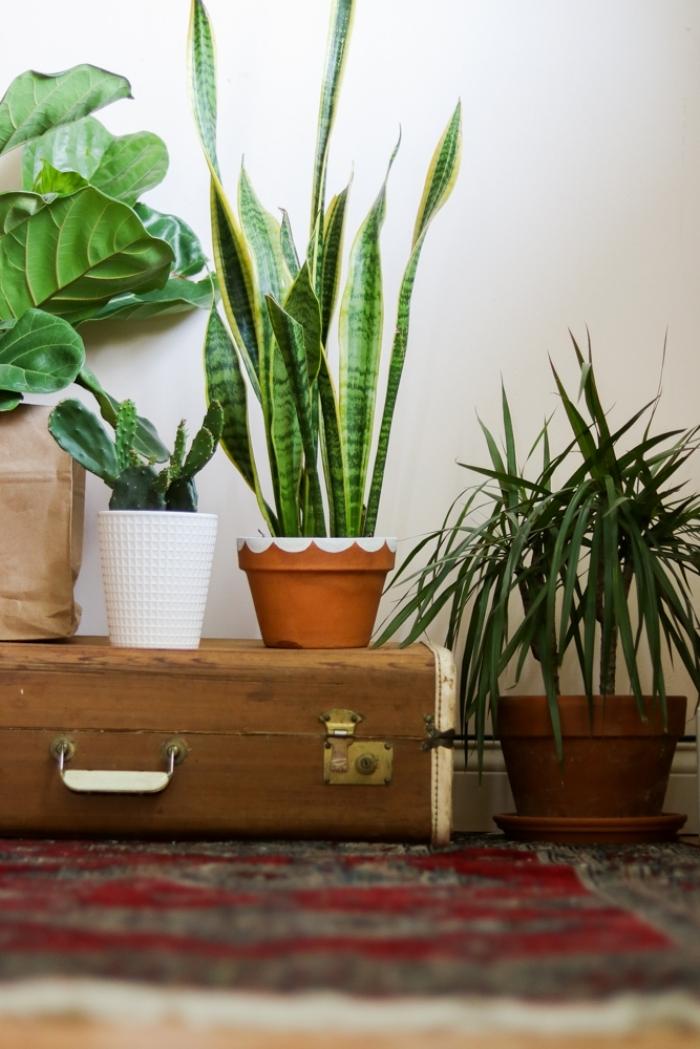 cadeau fait main pour maman pot fleur terre cuite peinture acrylique blanche plantes vertes