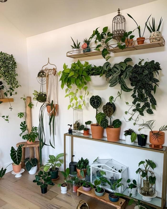 deco murale plante style bohème intérieur décoration salon parquet bois meubles étagère murale