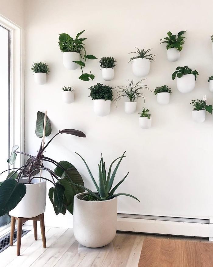 design intérieur boho minimaliste gros pots plante murale décoration pots blancs grands petits