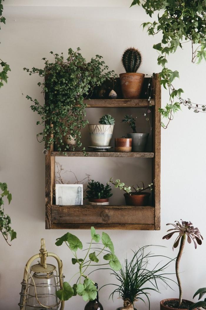 diy étagère pour plantes cadre vegetal mural construction bricolage planches bois cactus plante grimpantes