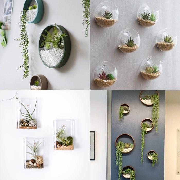 diy terrarium pour plante suspension murale décoration végétale contenant en verre succulentes