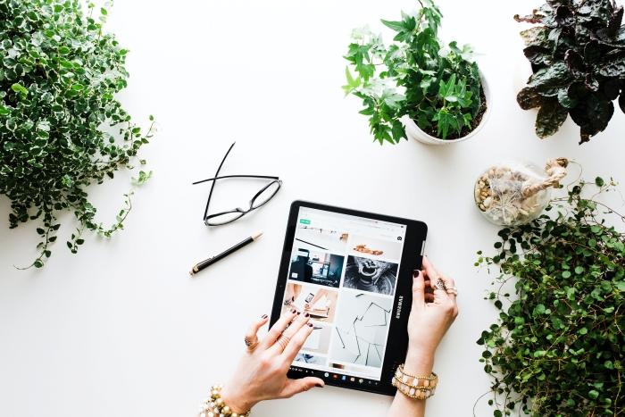 ecommerce vente en ligne distance bureau a domicile télétravail plante verte appareil
