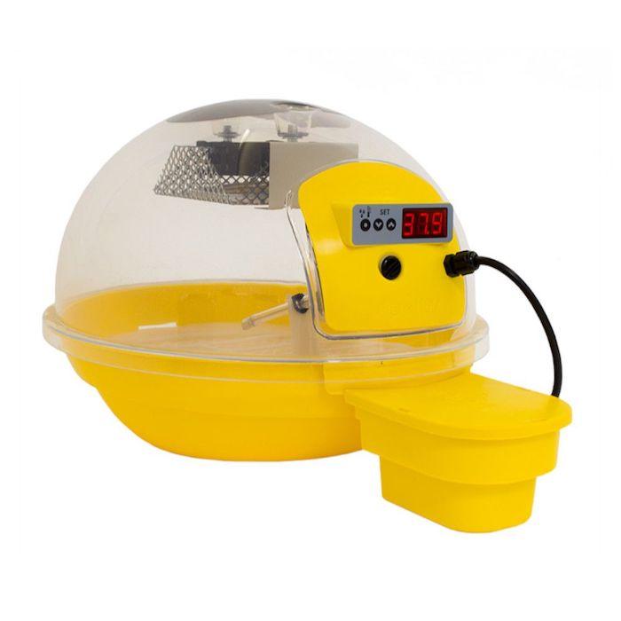 exemple de couveuse couleur jaune incubation artificielle basse cour