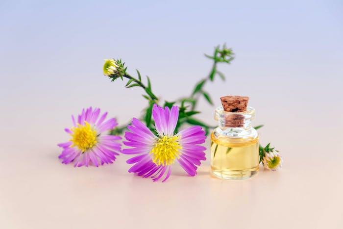 fragrances naturelles parfum bio à partir d ingrédients naturels sans parabens phtalhates