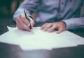 Banque, assurance, testament… Quels contrats pour les animaux de compagnie ?
