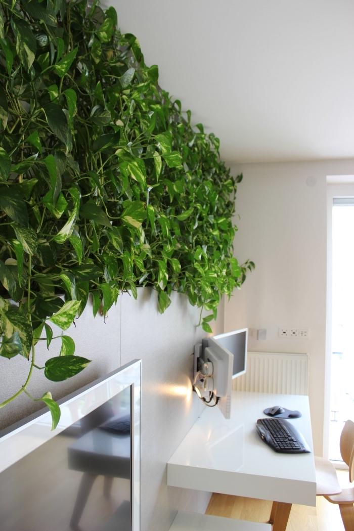 mur végétal aménagement bureau a domicile chaise bois plante decoration interieur clavier