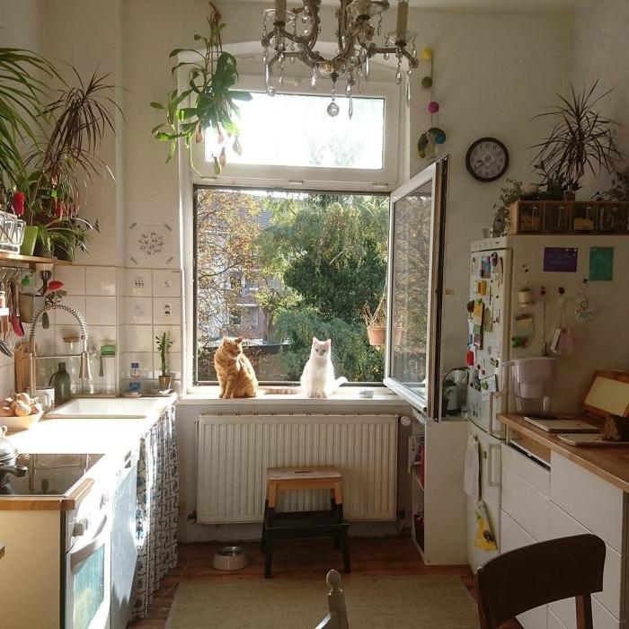 objet deco cuisine blanche avec plantes intérieur lustre cristaux suspension macramé pot meubles bois
