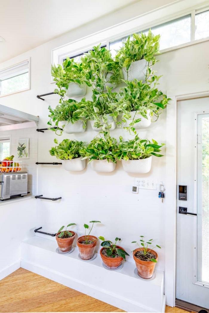 parquet bois peinture murale blanche jardinière murale intérieur plante verte pot terre cuite crochets