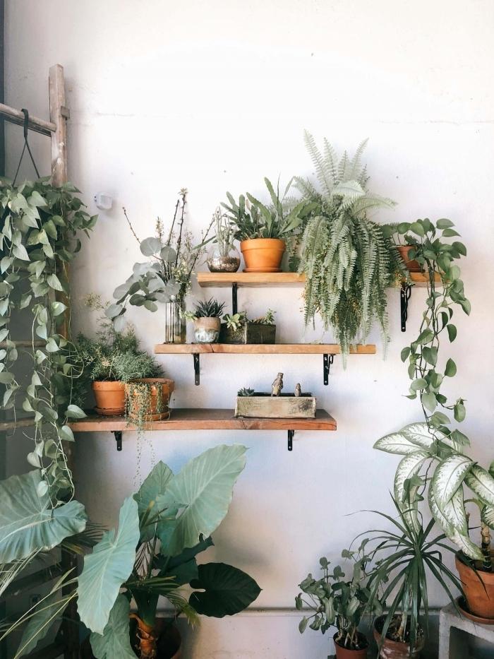 plante decoration interieur style jungalow boho intérieur salon meubles bois rangement murale