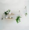 plante decoration style boho minimaliste support bois étagère pot suspendu plante monstera