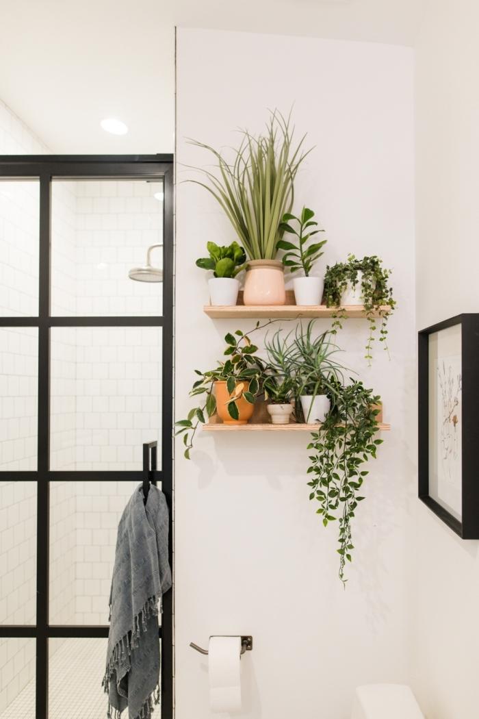 plante grimpante interieur décoration salle de bain avec plante verte rangement étagère murale bois