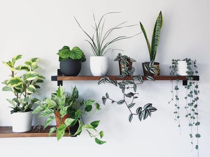 pot de fleur deco murale rangement ouvert étagère murale bois foncé pot fleur céramique noir mat