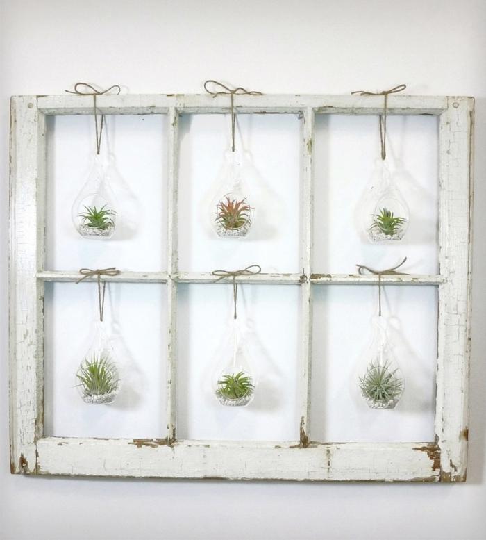 recyclage bois bricolage cadre fenêtre vintage peinture blanche cadre floral diy terrarium succulente