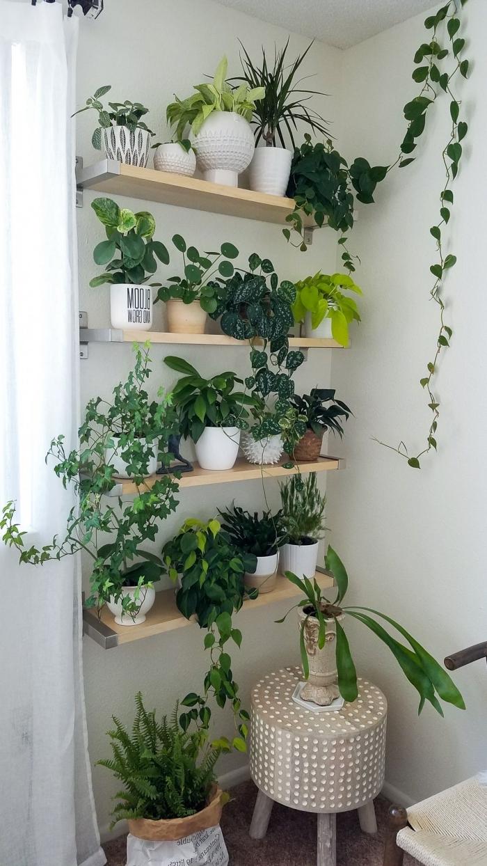 tabouret bois plante grimpante interieur rangement mural bois étagère pot céramique blanc rideaux