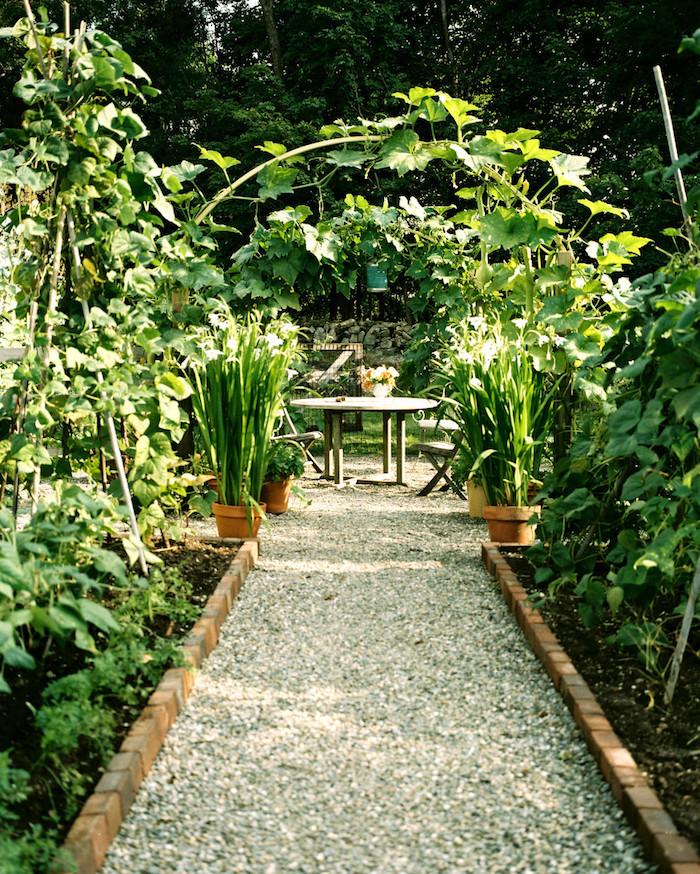 allée de jardin en gravier jardin et parterres de plantes vertes espace de repas dans le jardin