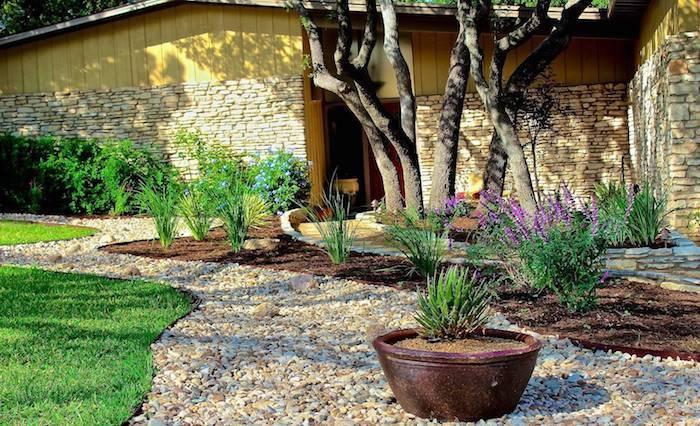 allée de jardin moderne en cailloux parterres de plantes vertes et arbres