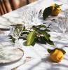 art de table décoration été assiette ronde blanche serviette blanche motifs plantes vaisselle