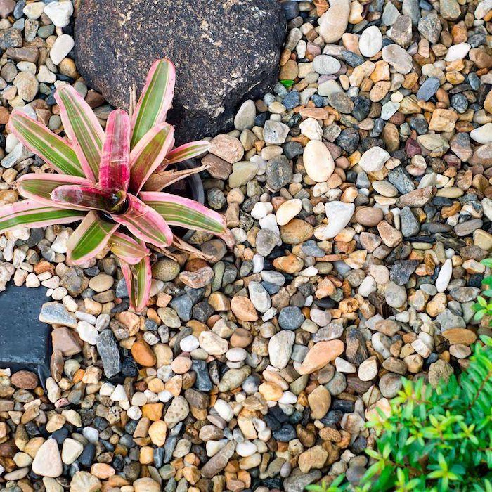 bourdures de jardin originales en cailloux multicolores et plantes
