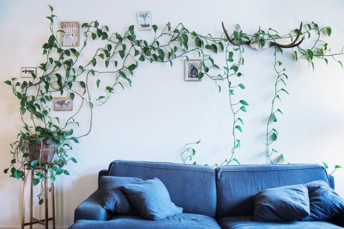 canapé bleu salon meble bois table café deco plante sur mur clips adhésifs cadres photo
