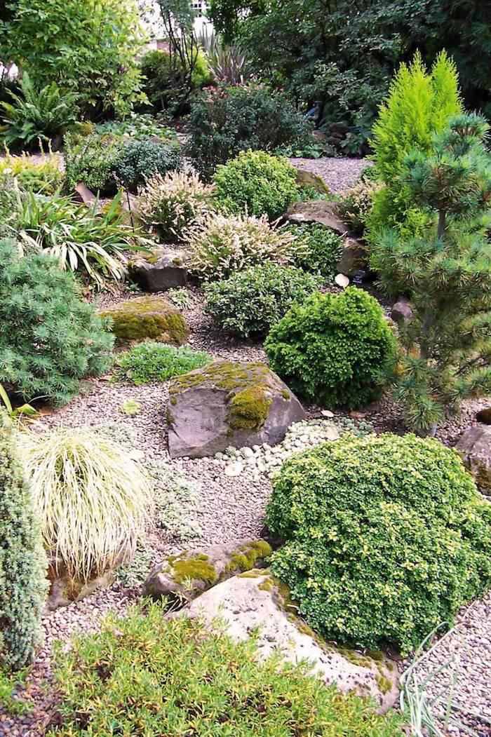 comment decorer son jardin en pierres gravier et buissons